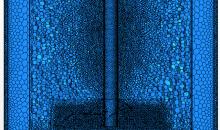Das Berechnungsgitter des Rührbehälters bestand aus 400.000 Zellen. Bilder CD-Adapco