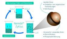 Gea vertreibt Abwasser-Aufbereitungsverfahren Nereda
