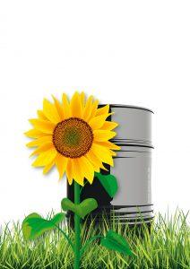 Pflanzliche Biomasse könnte schon bald Erdöl als Rohstoff bei der Anilin-Produktion ablösen. Bild: Everilda / Spectral-Design / Xangai – Fotolia