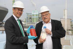 Abwasserreinigung im Industriepark Höchst