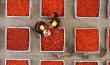 Steigende Nachfrage: Lanxess erweitert die Produktskapazitäten für Macrolex-Farbstoffe. (Bild: Lanxess)