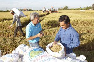 Das Agrargeschäft von Bayer entwickelte sich trotz schlechter Nachrichten bei Monsanto positiv. (Bild: Bayer)