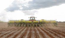 Landwirte in Brasilien können weiterhin Glyphosat einsetzen. (Bild: Bayer)