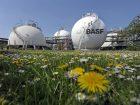 Im zentralen Tanklager in Ludwigshafen lagert BASF in 68 Tankbehältern flüssige Produktionsstoffe wie Methanol und Naphtha. Insgesamt werden dort 212.000 m³ Flüssigkeiten und fast 40.000 m³ unter Druck verflüssigte Gase gespeichert. (Bild: BASF)