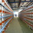 Das Werk kann nach der Erweiterung nun 20.000 Edelstahl-Kegs pro Woche produzieren. (Bild: Schäfer Container Systems)