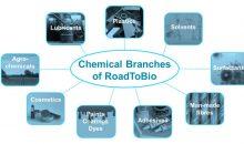 Diese neun Produktgruppen hat Roadtobio analysiert und aufgezeigt, wie der Anteil an biobasierten Produkten erhöht werden kann. (Bild: Roadtobio)