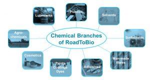 dechema_RoadToBio_Chemical Branches