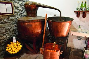 Porto da Cruz; Madeira; Portugal - february 23 2018 : rum distil