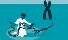Mit der Crispr-Cas9-Technologie lassen sich beliebige Gensequenzen effizient bearbeiten. Für die Entwicklung dieser Methode erhalten Emmanuelle Charpentier und Jennifer Doudna den Chemie-Nobelpreis 2020. (Bild: Johan Jarnestad/The Royal Swedish Academy of Sciences)